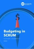 Budgeting in SCRUM