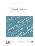 Budget Options for NYC 2014