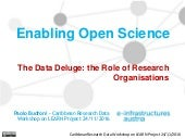 The Data Deluge: the Role of Research Organisations