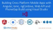 Building Cross Platform Mobile Apps