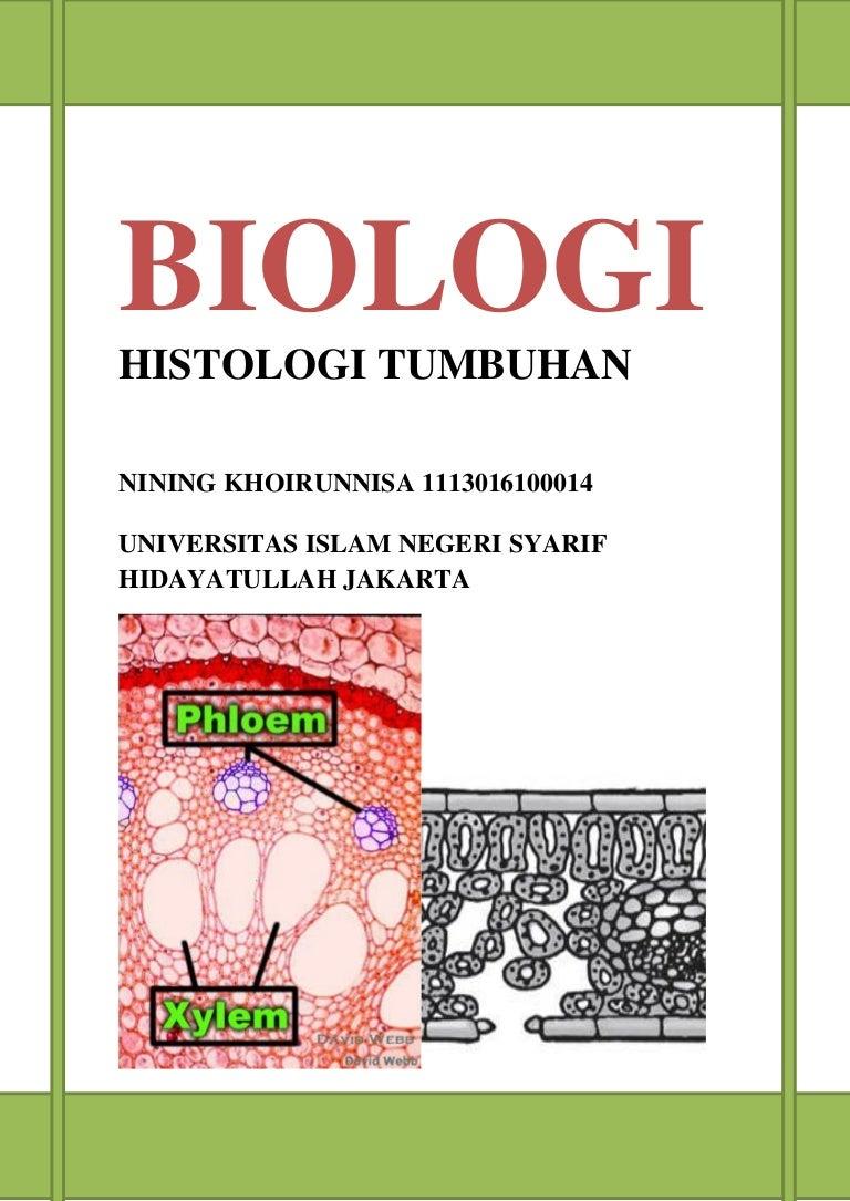 Buku Struktur Dan Fungsi Jaringan Tumbuhan Nining Khoerunnisa