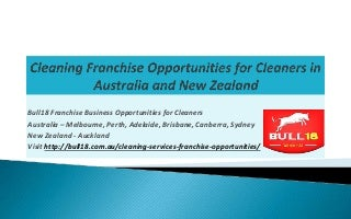Bull18 franchise cleaning business