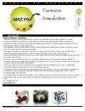 MeM Partners Newsletter june 2013