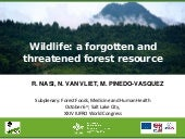 Wildlife: a forgotten and threatened forest resource