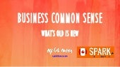 Spark 2015 - Business Common Sense by Ayelet Baron
