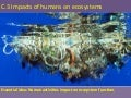 C.3 impact of humans on ecosystems