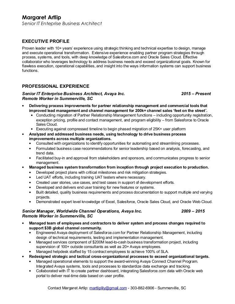 artlip senior enterprise business architect resume 2016