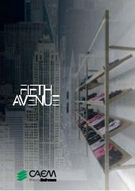 Fifth Avenue - FRANCAIS