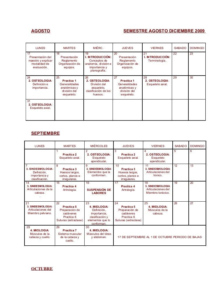 Calendario Anatomia 2009