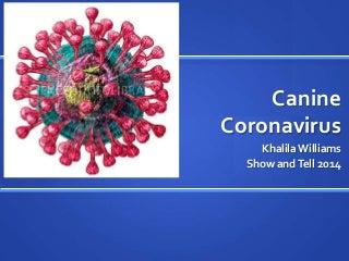 caninecoronavirus-140129234001-phpapp01-