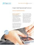 Smart Grid Operational Services Selecting The Right Mobile Solution Fact Sheet
