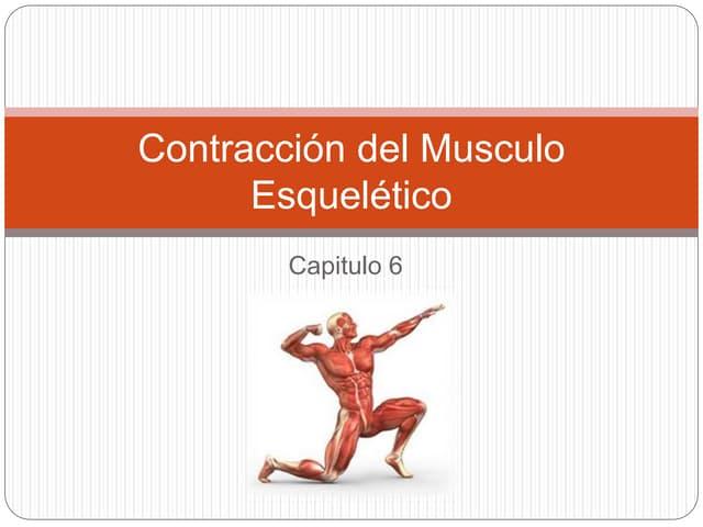 Contracción y excitación del musculo esquelético