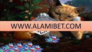 Capsaqq Apk - AlamiBet.com