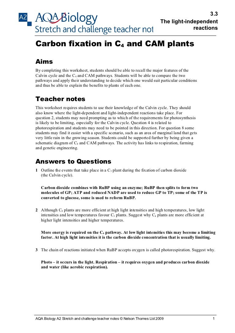 Uncategorized Calvin Cycle Worksheet carbon fixation teacher notes