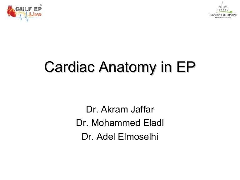 Cardiac anatomy in ep akram - eladl - adel