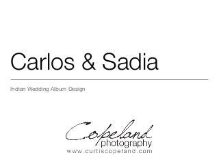 Carlos and Sadia's Indian Wedding Album Photography Miami Florida