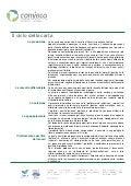 Carta - Il ciclo della carta