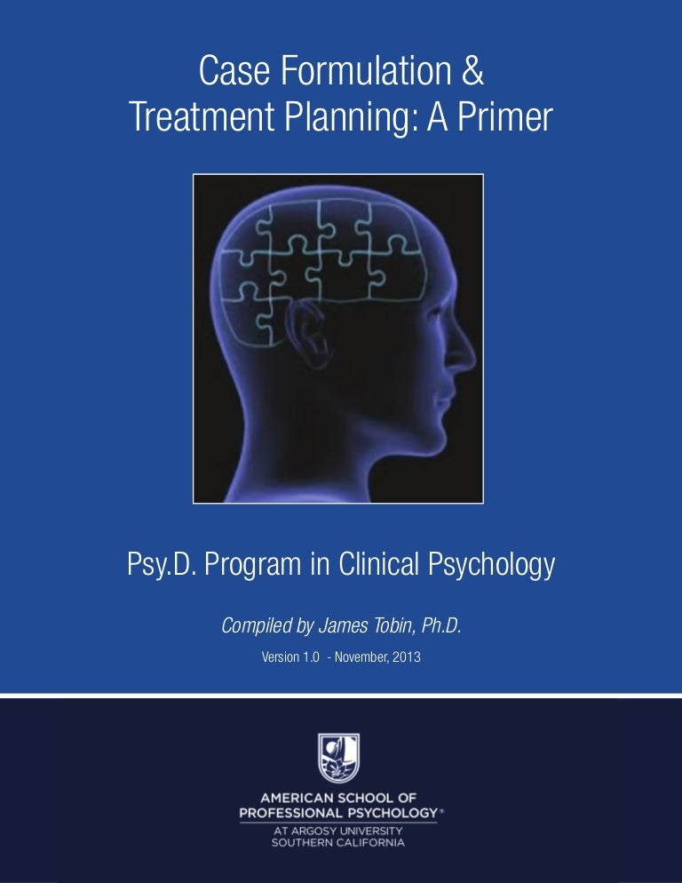 Individual Case Formulation (Practical Resources for the Mental Health Professional)