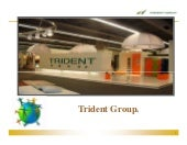Case Study_Trident Group