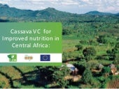 Cassava value chain for improved nutrition in Central Africa