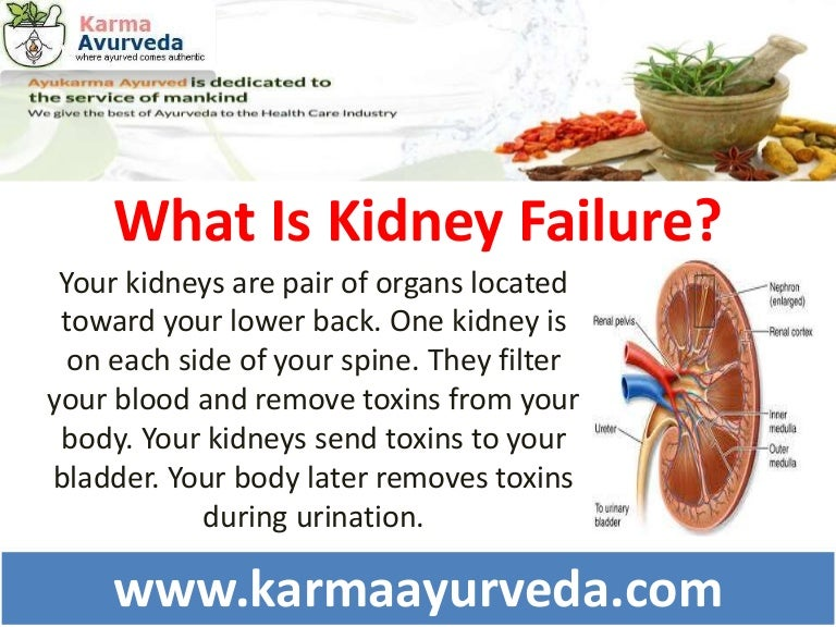 What are the Causes of kidney failure ?