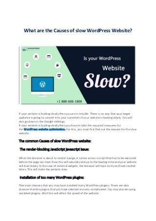 What are the Causes of slow WordPress Website?