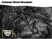 Sustainable wildlife management: Guidance for a sustainable wild meat sector