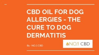 Cbd oil for dog allergies - the answer to dog dermatitis