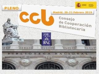 Pleno CCB. Consejo de Cooperación Bibliotecaria. Ana Santos Aramburo