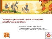 Challenges to potato-based systems under climate variability/change conditions