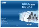 CDLK immersion type multistage centrifugal pump