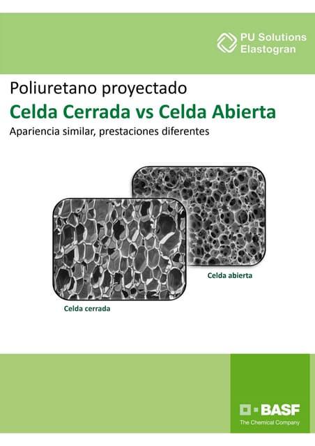 f0c559e54de Celda Cerrada vs Celda Abierta  apariencia similar