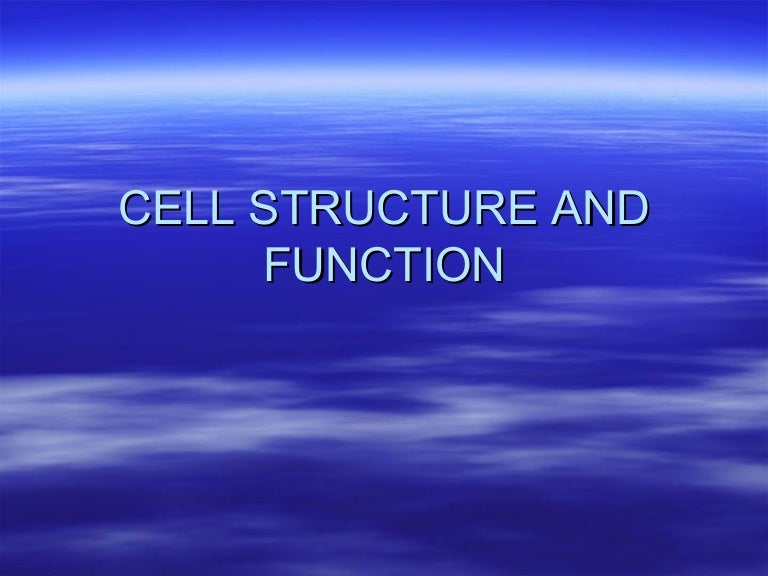 Printables Cell Structure Function Worksheet cell structure and function