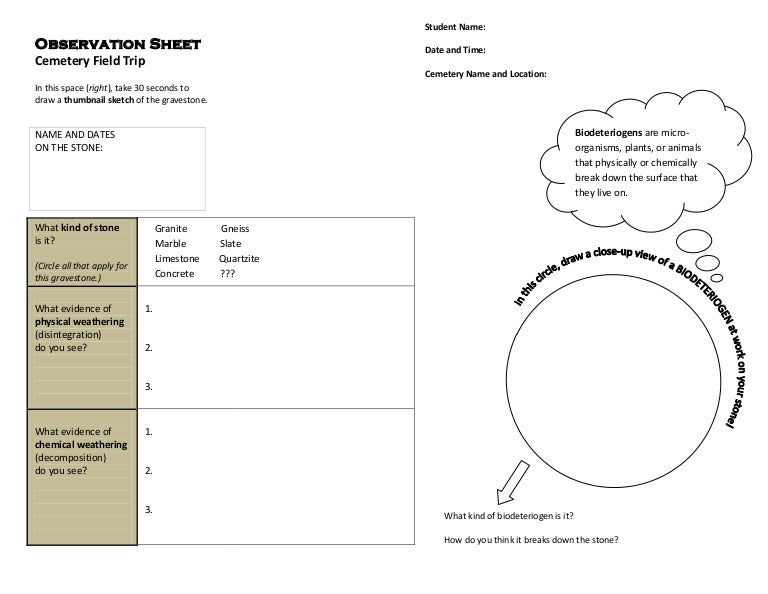 Cemetery Field Trip Observation Sheet Earth Systems Science