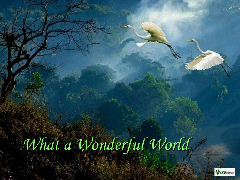 What a Wonderful World - beautiful mother nature with beautiful music…