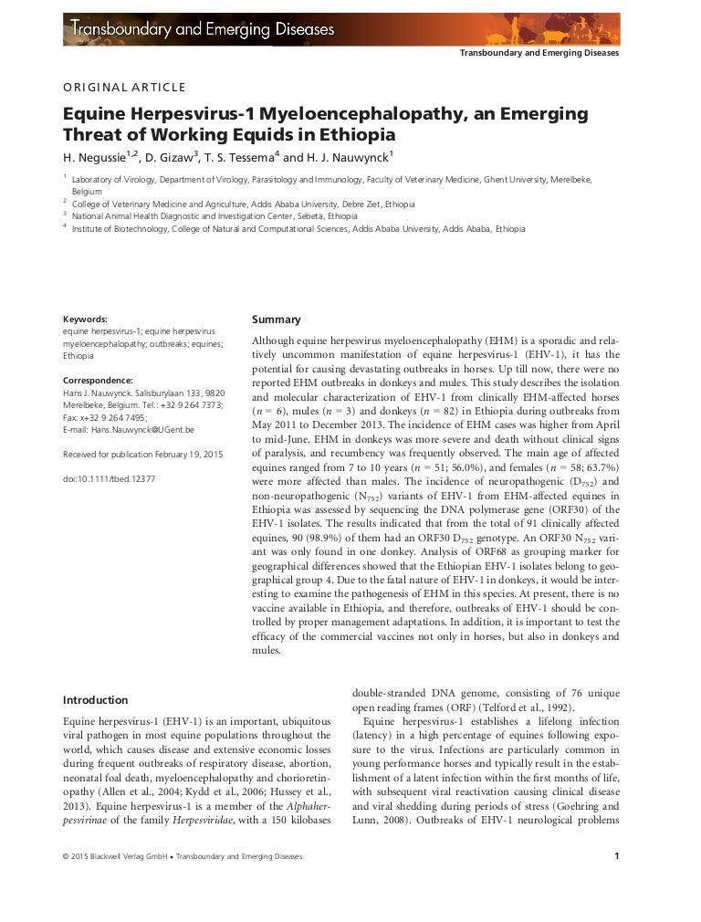 Equine herpes virus in Ethiopia