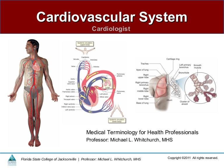 Cardiovascular System Cardiology