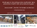 Challenges in intensifying India smallholder dairy production: Health risks and productivity gaps