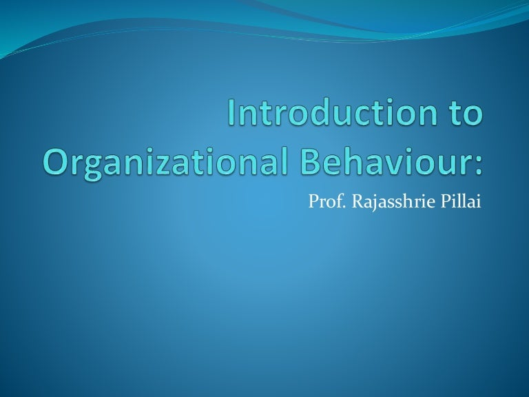 Organizational Behavior Theories And Concepts Ebook