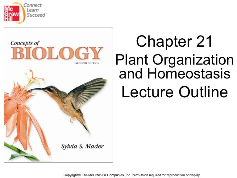 bio 100 revision chapter 4 Biology chapter 4 - animal kingdom revision notes & short key-notes prepared by expert biology teachers from latest edition of cbse(ncert) books to.