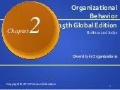 Chapter 2 diversity in organizations