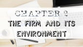 Chapter 2 lesson 2 the local and international business environment of the firm