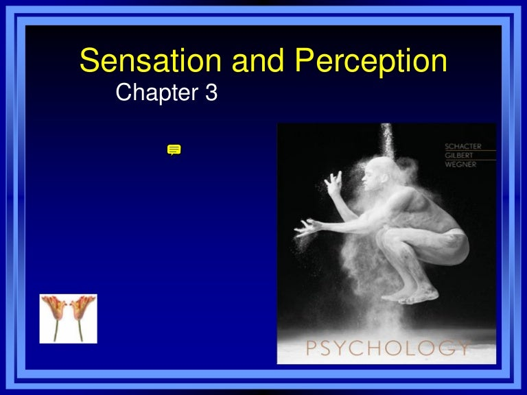 sensation and perception 2 essay In order to illustrate the difference between sensation and perception, reid imagines a blind man that by 'some strange distemper' has lost all his notions of external objects, but has retained the power of sensation and reasoning.