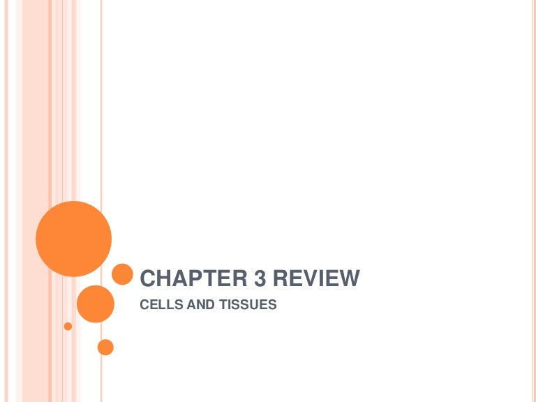 Chapter 3 Anatomy Review Questions