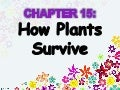 Chapter 5 : How Plants Survive