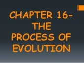Chapter 6 : The Process of Evolution