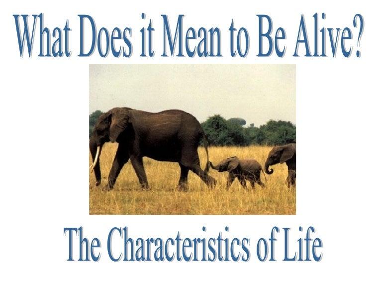Characteristics Of Life – Characteristics of Life Worksheet