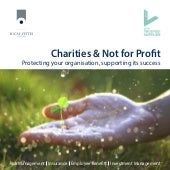 Charities and not for profit brochure - protecting your organisation