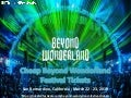 Beyond Wonderland Festival Tickets from Tickets4Festivals