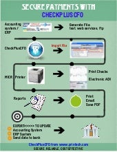 CheckPlusCFO flow chart